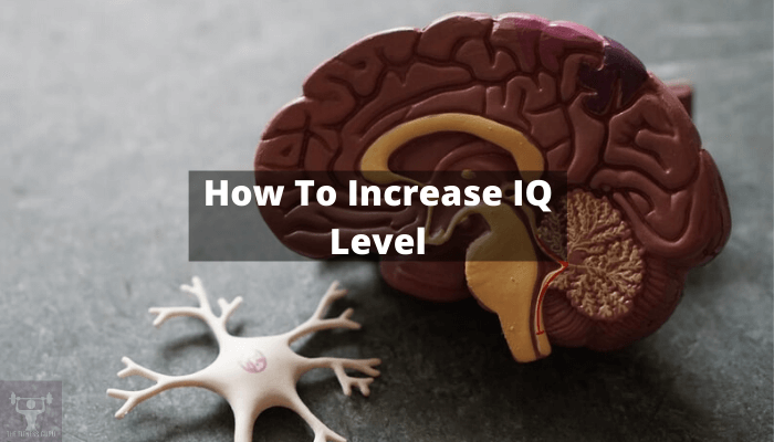 How to increase the iq level on apicture of human brain